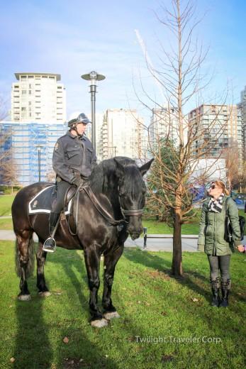 バンクーバー警察 馬