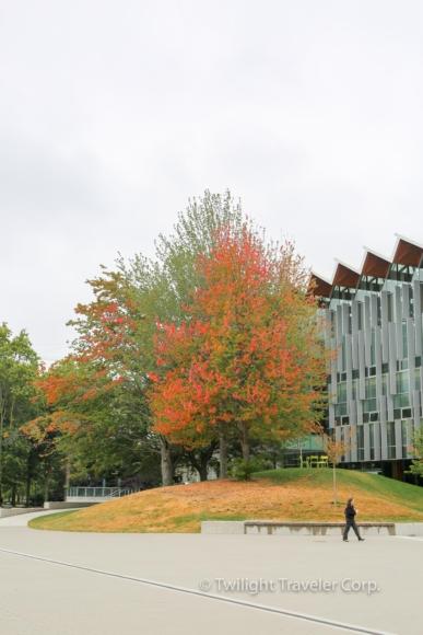 16 UBC 須磨学園-21