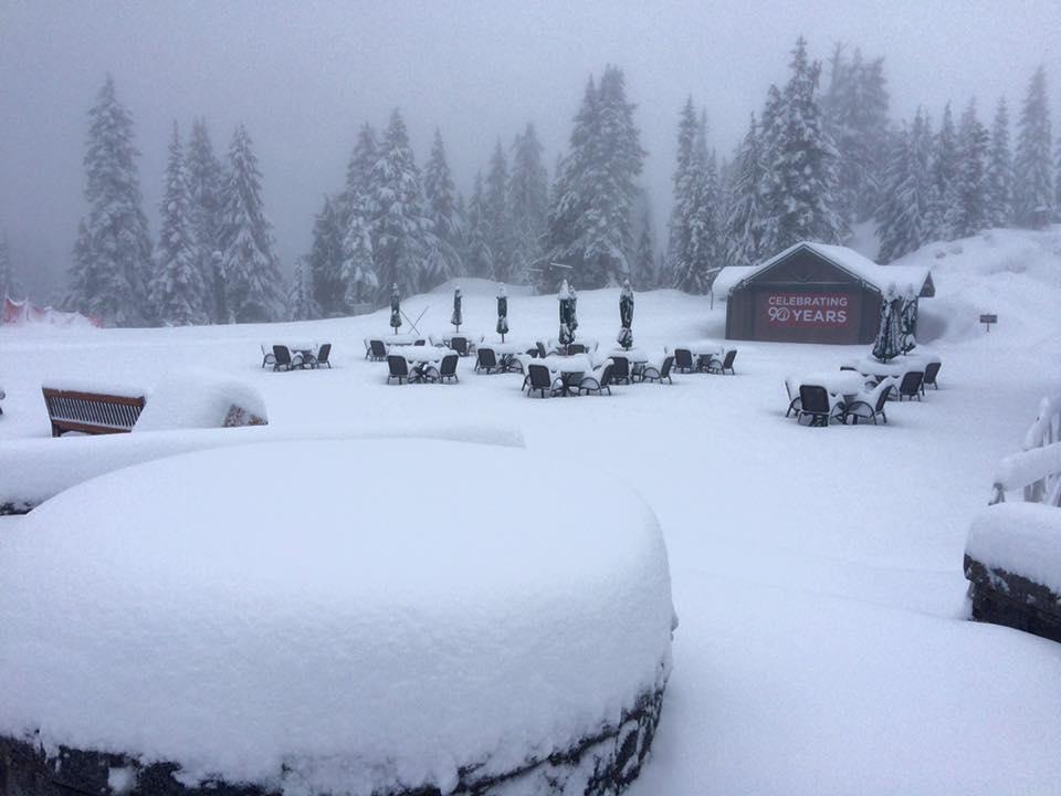 Grouse Mt 雪