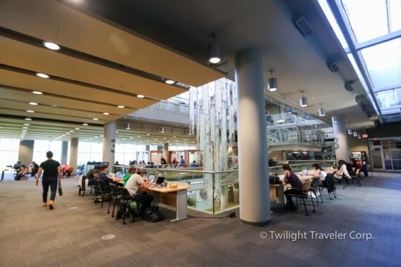 UBC図書館