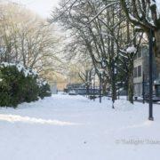 19 バンクーバー雪