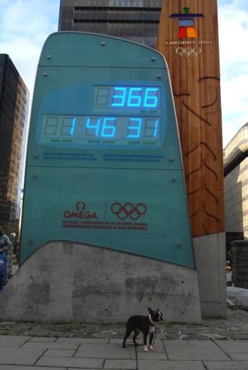 オリンピックまであと1年のカウントダウン