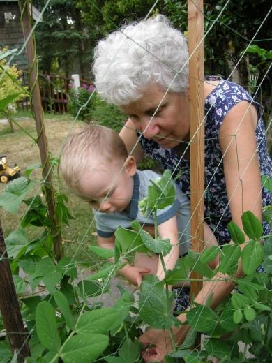 July 5th 2009 Bean picking 008.JPG