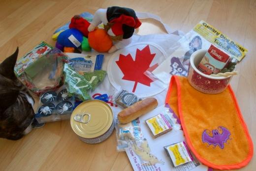 Dog Show Canada 09-40s.jpg