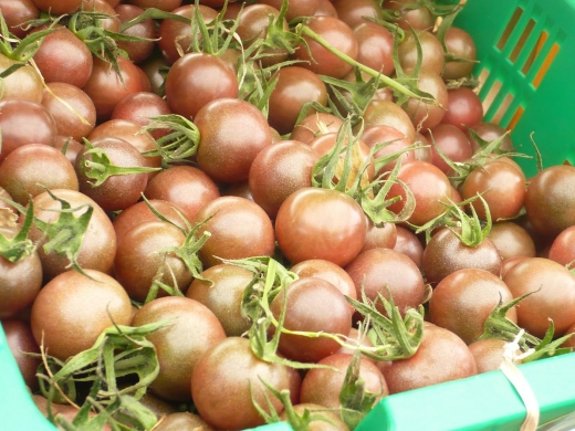 gray tomato.JPG